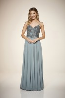 Silver Sheen Chiffondress
