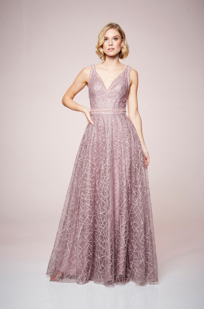 Elegant Embroidery Dress