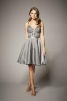 SILVER TWINKLE DRESS