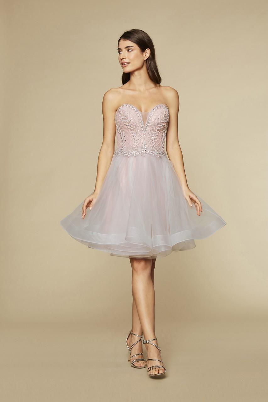 BLUSH BEAUTY DRESS
